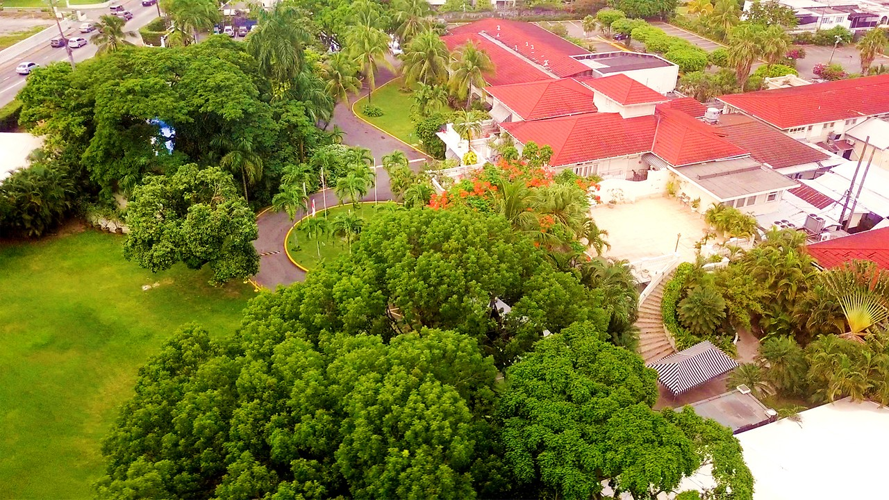 Terra Nova All Suite Hotel Hotel In Kingston Jamaica
