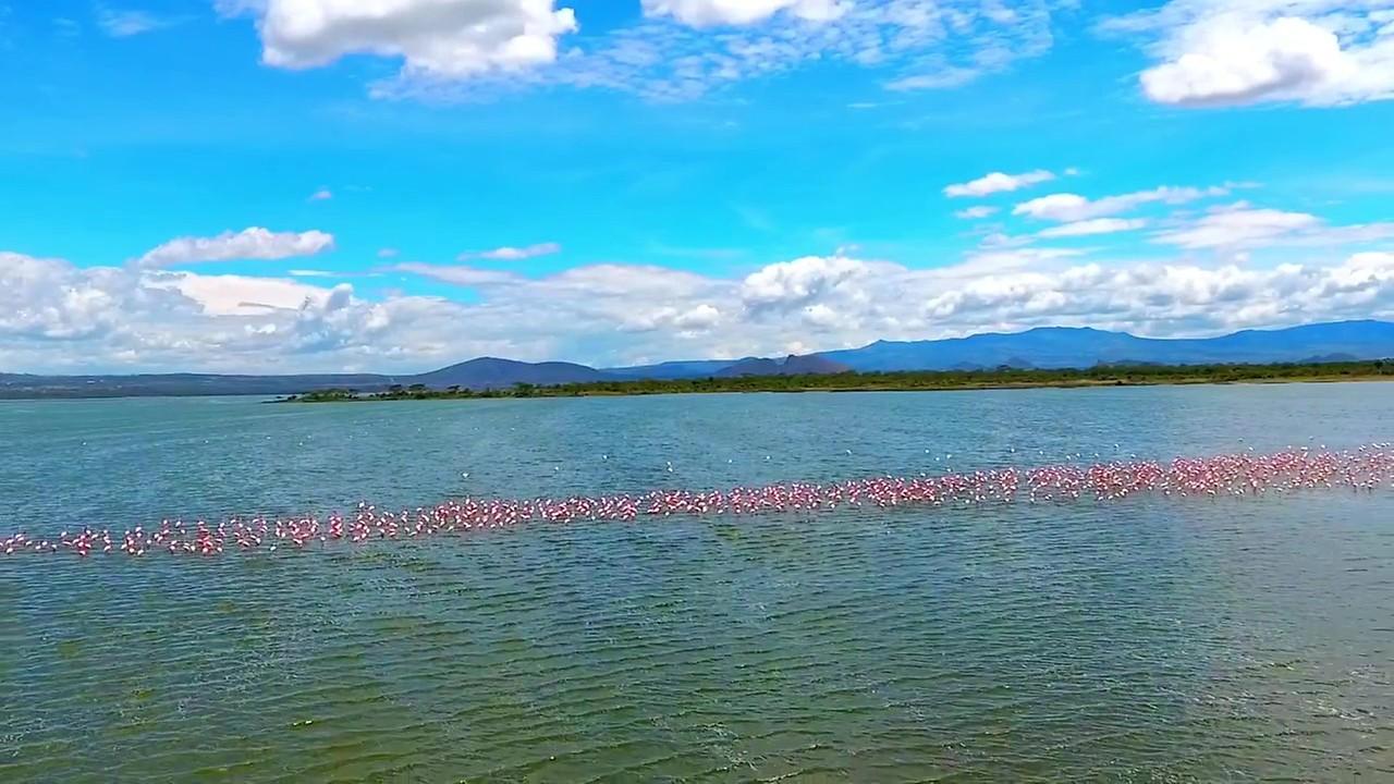 Lake Elmenteita Serena Camp | Lake Nakuru Safari Hotel | Soysambu  Conservancy